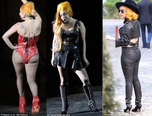 Lady Gaga grassa composizione.jpg